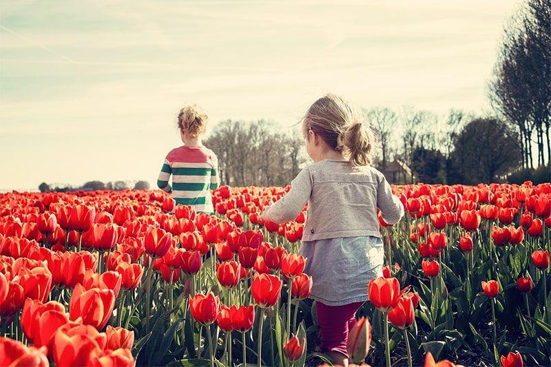 Spring in Crozet