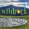 Wildrock Summer Day Camp